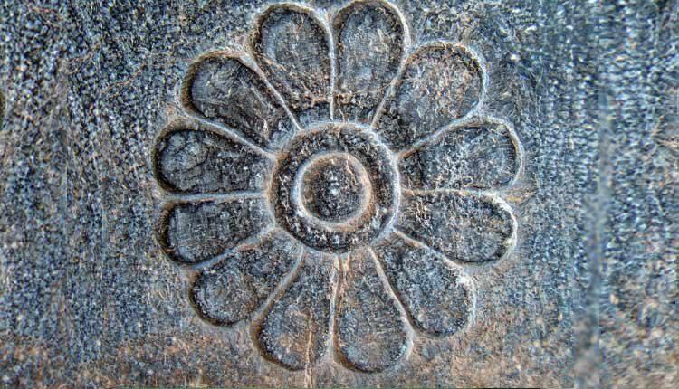 گل نیلوفر آبی و اهمیت آن در تاریخ جهان باستان
