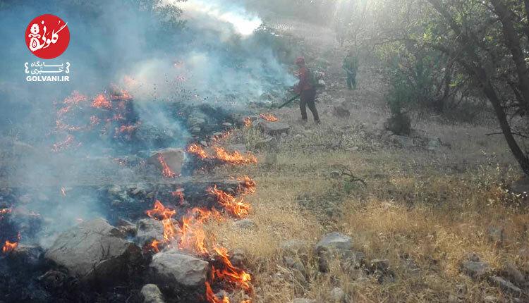 آتش سوزی تنگ آب ممسنی عمدی است