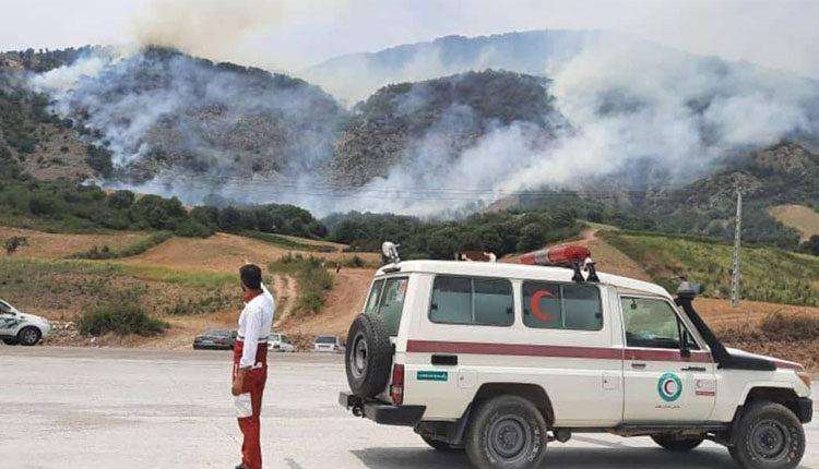 کشاورزان زمین را آتش زدند و هیرکانی آتش گرفت