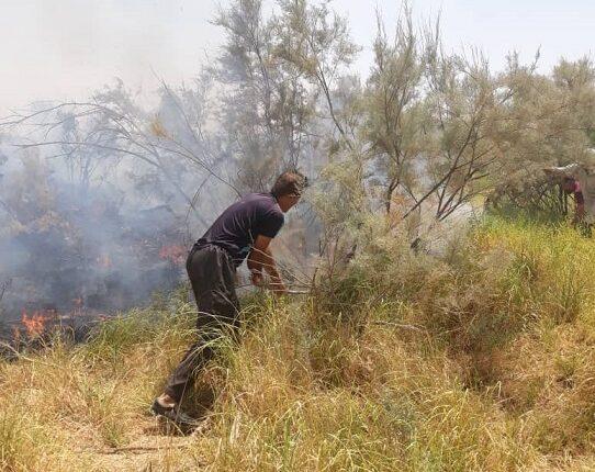 آتش سوزی بیشه زار مارون