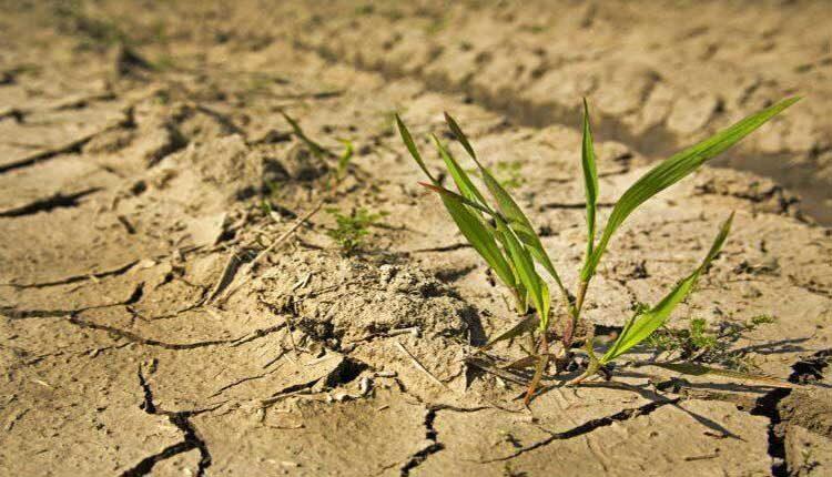 طلسم خشکسالی در پاییز