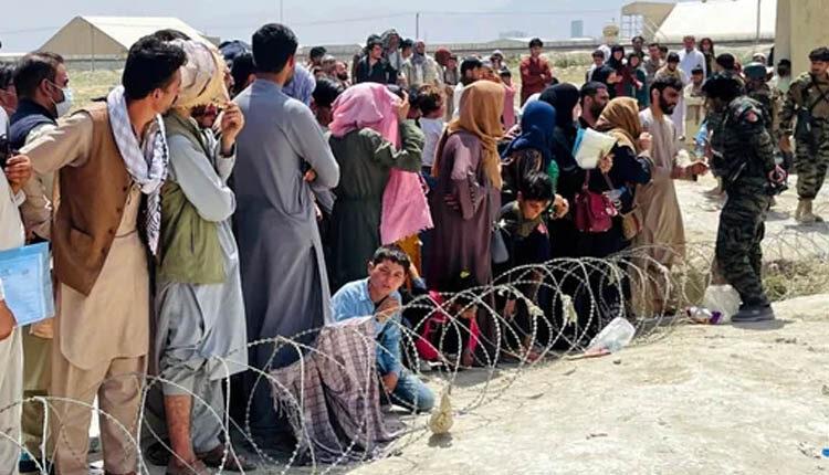 دنیا نمی خواهد صدای افغانستان را بشنود