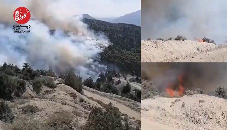 منطقه حفاظت شده جهان نما در آتش