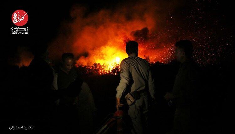 آتش سوزی جنگل کرخه در نزدیکی سایت تکثیر گوزن زرد مهار شد