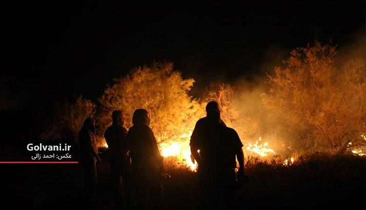 آتش سوزی نزدیکی سایت تکثیر گوزن زرد
