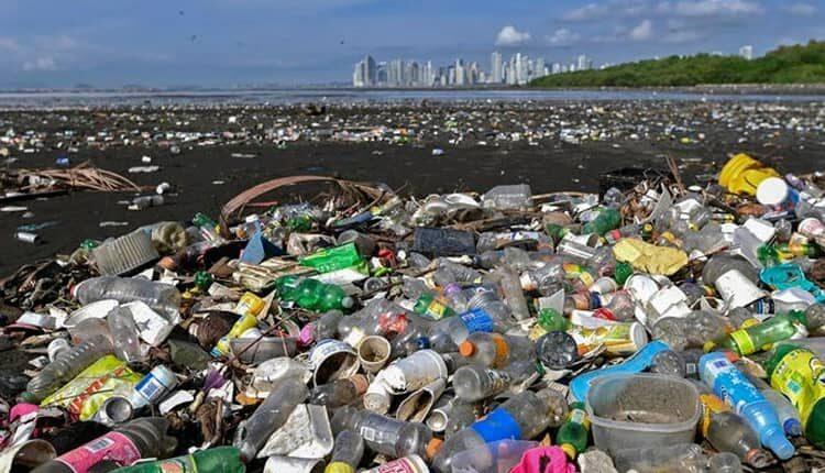 بحران زباله های پلاستیکی و تهدیدی برای محیط زیست